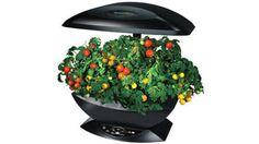 Mini potager high-tech dans la cuisine // http://www.deco.fr/actualite-deco/275918-potager-hightech.html