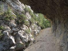 Moins sportives, mais peut-être plus intimes que leurs grandes cousines du Verdon, les gorges de Trévans sont un magnifique coin des Préalpes du sud, situées non loin de la vallée de l'Asse. Cette balade aux senteurs de Provence, chemine tout d'abord au fond de ces gorges avant de traverser une superbe réserve biologique, refuge de choix pour les (...) Trekking, Durance, Refuge, Country Roads, Loin, Biologique, Water, Outdoor, Pathways
