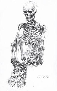 das Skelett= skeleton (literal, figurative)/ skeleton in one's cupboard= ein… Life Drawing, Figure Drawing, Drawing Sketches, Painting & Drawing, Art Drawings, Drawing Drawing, Drawing Ideas, Anatomy Drawing, Anatomy Art