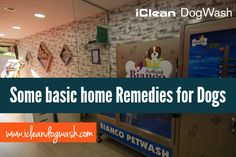 """Some basic home Remedies for Dogs""-  How does one know the type of worm affecting his or her dog? to know about this, you must first learn how worm infections are identified and why treating them as quick as possible is important.  To read more click here: http://goo.gl/2eNkJp ‪#‎BasichomeRemedies‬ ‪#‎DogWash‬"