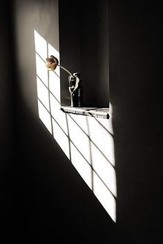 """Window Light"" by Kids Naturally Photography Shadow Art, Shadow Play, Still Life Photography, Light Photography, Window Photography, Minimalist Photography, Wabi Sabi, Shadow Silhouette, Light And Shadow"