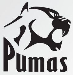 Pumas snatch victory against Leopards Rugby Sport, Pumas, Argentina Rugby, Rugby Poster, Rugby Union Teams, South African Rugby, Sports Clubs, Sports Logos, Team Mascots
