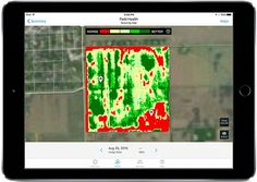 Big data offers farmers worldwide more precise insights about weather and soil, allowing them to use the smallest possible amounts of water, sprays, and fertilizer.