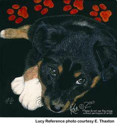 English Shepherd Puppy scratchart print Lucy by TrueImageryStudio, $25.00