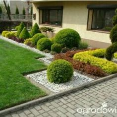 Small Topiary Garden In The Front Yard Front House Landscaping, Outdoor Landscaping, Landscaping Ideas, Small Gardens, Outdoor Gardens, Small Garden Landscape, Topiary Garden, Backyard Garden Design, Garden Path