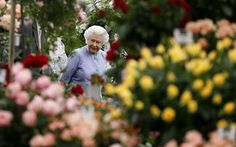 Queen Elizabeth II amongst the colours of the Chelsea Flower Show