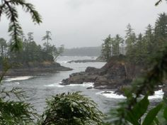 Wild Pacific Hiking Trail...Ucluelet