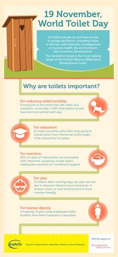INFOGRAPHIC: 19 November, World Toilet Day | EurActiv