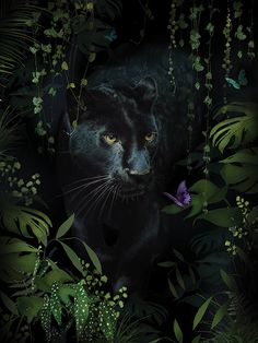 Buy Summer Thornton (Panther) Canvas Prints on The Art Group. Black Panther Tattoo, Black Panther Art, Animals Beautiful, Cute Animals, Wild Animals Pictures, Jungle Art, Illustration Art, Illustrations, Popular Art