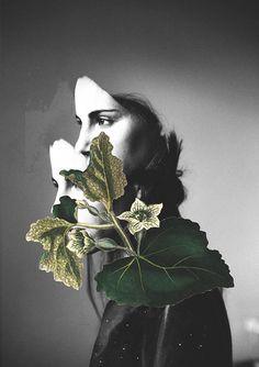 Rocio Montoya #collage #photography