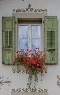 Lovely shuttered window with flowers.
