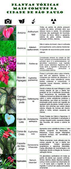toxicologia tabela