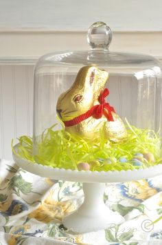 Lindt GOLD BUNNY as a beautiful (and delicious) centerpiece!