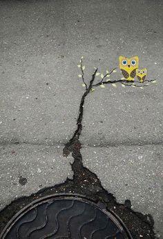 Owl street art photography colorful art graffiti crack on the street pavement Best Street Art, Amazing Street Art, Amazing Art, Awesome, Street View, Art Environnemental, 3d Art, Street Art Utopia, Street Art Graffiti