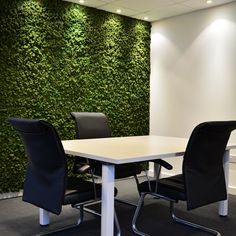 A preserved Moss wall is a fantastic feature for a board/ meeting room. The design allows creativity to blossom, acts as brilliant sound proofing & they're maintenance free.    If you like what you see, visit our site for more inspiration or call us to find out more.