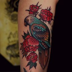 Traditional Parrot Tattoo by Electric Martina Trendy Tattoos, Popular Tattoos, Small Tattoos, Tattoos For Guys, Bird Tattoo Sleeves, Sleeve Tattoos, Traditional Japanese Tattoo Designs, Traditional Tattoos, 1 Tattoo