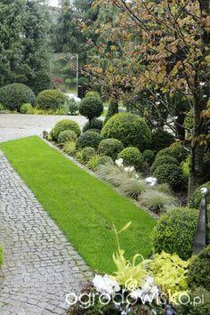 Front Garden Landscape, Garden Landscaping, Front Gardens, Outdoor Gardens, European Garden, Creative Landscape, Topiary, Flower Beds, Dream Garden