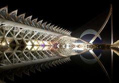 Vista nocturna de parte de la Ciudad de las Artes y las Ciencias - Valencia ( España )