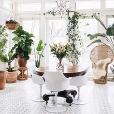 23 images that show how to style indoor plants: A sunroom isn't complete without a flower and plant of every kind. Image credit: Instagram/bowerhouse