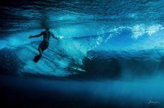 Epic Underwater Photography by Sarah Lee - My Modern Metropolis
