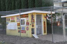 Anne Fannie's Green Acres: My Chicken Coop