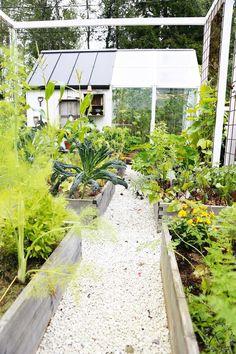 Voiko sitä hehkuttaa liikaa, kuinka paljon tykkään puutarhuroinnista? Mikä siinä onkin, että se on niin mukavaa? Mikä saa ihmisen ylipää...