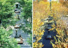 Keyaki Hiroba Plaza | PWP Landscape Architecture
