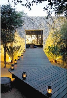 Boardwalk through a Fever Tree Forest, Leadwood Trees and Cycads towards the Granite Wall Somerset West, Game Lodge, Beach Road, Tree Forest, Architect Design, Wedding Bouquets, Wedding Styles, Safari, Cottage