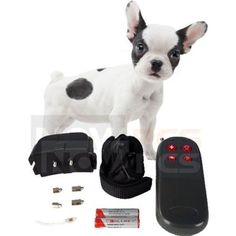 4in1 Remote SmallMed Dog Training ShockVibrate Collar -- Want to know more, click on the image.