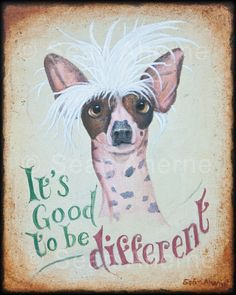 chinese crested clothing - Google Search