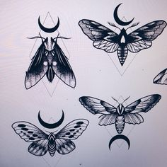 """1,124 Likes, 8 Comments - Carolin Walch (@carowalchtattoo) on Instagram: """"am 16.5. (pfingstmontag) ist wieder flashday! hier schonmal ein kleines preview  #moth #motten…"""""""