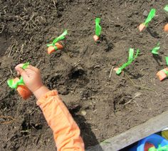 letter recognition game- love this idea. Gardening for letters. ABCs on pool noodles made to look like carrots. Pull and name letter . Could do in the sandbox too.