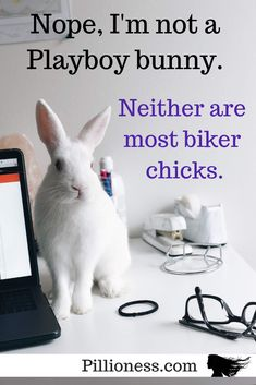 Next time you see a motorcycling woman, look twice. Nothing like a Playboy bunny - or any kind of rabbit - is she? Motorcycle Safety Gear, Playboy Bunny, Lady Biker, Bikers, Bunnies, Rabbit, Motorcycles, Woman, Bunny