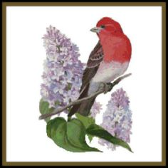 New Hampshire State Bird and Flower Counted Cross Stitch Pattern - Purple Finch and Purple Lilac