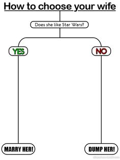 How to choose your wife. #StarWars...She named our dog Chewbacca