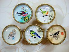 Bird Drawer Knobs | eBay £4.45