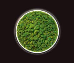 Luce Verde Slim von Sattler | Architonic