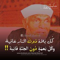 الاكثر مشاهدة على شبكة مصر _ الشعراوي رحمه الله