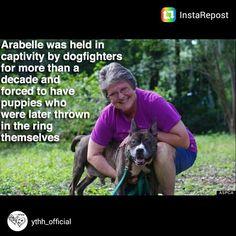 God bless you, Arabelle