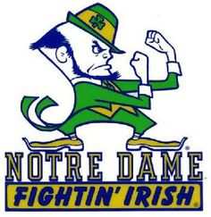 Notre Dame Counted Cross Stitch Pattern PDF ~EMAIL ONLY~