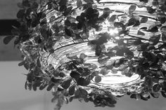 Di Classe's Orland-big light creates the effect of light streaming through leaves.