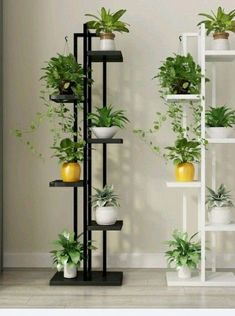 Standing flower shelf, flower pot stands with wood for plant display. Standing flower shelf, flower pot stands with wood for plant display. Balcony Plants, House Plants Decor, Indoor Plants, Plants In Living Room, Living Rooms, Herb Garden Indoor, Plants In Bedroom, Indoor Plant Decor, Indoor Flowers