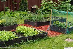 kierrätys,puutarha,kierrätysidea,piha,kierrätysmateriaali