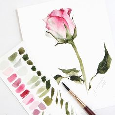 Painting @phatcharaphan_artist 's rose. I've been admiring her work for so long, hoping to join one of her masterclass soon! . Princeton Neptune Round | Daniel Smith Watercolors | Baohong 300gsm CP
