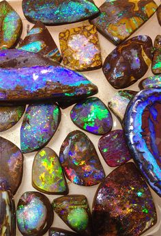 Some nice boulder opal and opalized wood I brought back with me from Queensland.  Bill Kasso