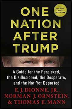 One Nation After Trump: A Guide for the Perplexed, the Disillusioned, the Desperate, and the Not-Yet Deported: E.J. Dionne Jr., Norman J. Ornstein, Thomas E. Mann: 9781250164056: Amazon.com: Books