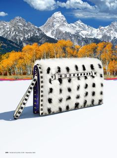 Valentino fur clutch By Kyle Anderson, September Marie Claire