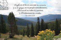 Arte Cristiano  Proverbios 3  Fotografia de las by PicturesofFaith,