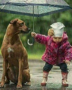 Top 11 Amazing Pictures Of Childrens with Their Pets is part of Animals for kids - There is no nearly adorable sight as that of a child hugging his pet Their sincere, clean and unconditional twoway love is what makes them such true friends Animals For Kids, Animals And Pets, Baby Animals, Funny Animals, Cute Animals, Funny Dogs, Dogs And Kids, Child And Dog, Animals Planet