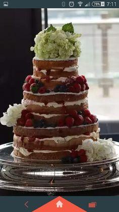 Regnier cakes - naked sponge with berries